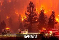 VIDEO: Wildfire in California