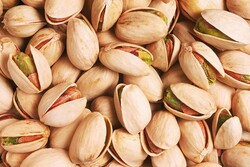 Iran exports over 21,000 tons of pistachio in Q1: IRICA