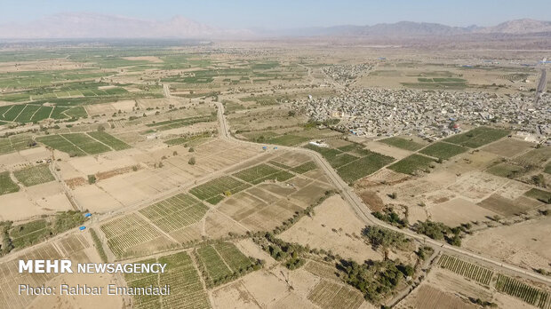 1st phase of pressurized irrigation network launched in Minab