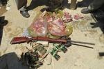 ۲ گروه شکارچی در دامغان دستگیر شدند