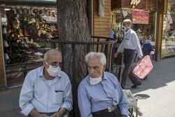 غربالگری ۵۵ درصدی سالمندان گیلان در طرح شهید سلیمانی/ ۵۰۰ تست مثبت شد