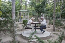 هدف سند سالمندی، رسیدن به جامعهای بدون تبعیض سنی است