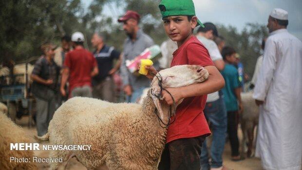 """Gazze'de """"Kurban Bayramı"""" havası"""
