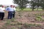 تگرگ و سیل بیش از ۶۵۸میلیارد ریال به بخش کشاورزی خوی خسارت زد