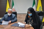 طرح توانمندسازی زنان سرپرست خانوار درآذربایجان شرقی اجرایی می شود
