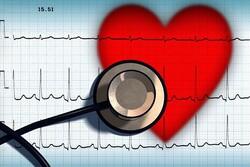 ساخت بیوموادی با قابلیت استفاده در ایمپلنت های قلبی-عروقی