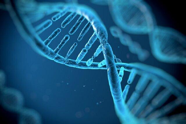 ژنها چه نقشی در تأثیرگذاری داروهای کرونا بازی می کنند/ تلاش برای شخصی سازی درمان