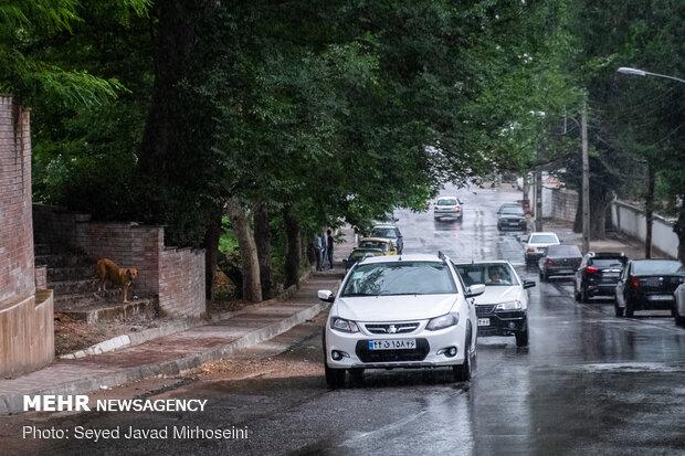 Summer rainfall in Rasht