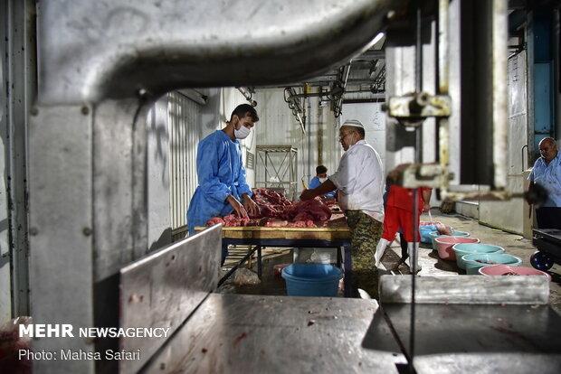 توزیع گوشت قربانی بین نیازمندان گلستانی