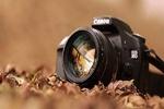 انجمن عکاسی کانون پرورش فکری در ۲۰ استان کشور تشکیل شد