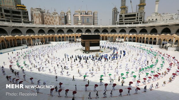 This year's Hajj rites differ from previous yr. due to corona