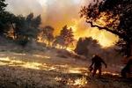 ABD'de orman yangınları devam ediyor