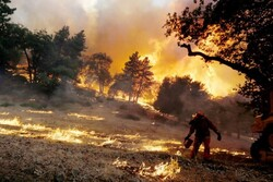 US wildfire forces nearly 8,000 people to evacuate homes