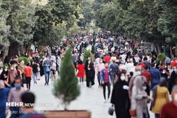 کرونا و گردش آزاد ناقلان بیماری و سفیران مرگ در خیابانهای همدان