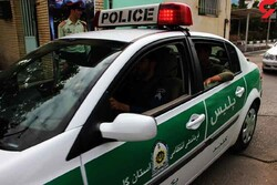 Police confiscate 599 kg of illicit drugs in S Iran