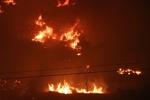 آتش سوزی موزه نارنجستان قوام به سرعت مهار شد