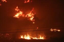 İzmir'deki orman yangınında boşaltılan bir site yandı