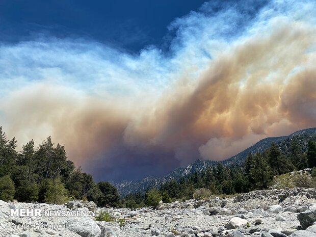 آتشسوزی در جنگلهای جنوب کالیفرنیا و تخلیه ساکنان