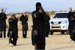 جنایات داعش در مناطق تحت کنترل ائتلاف آمریکا افزایش یافته است