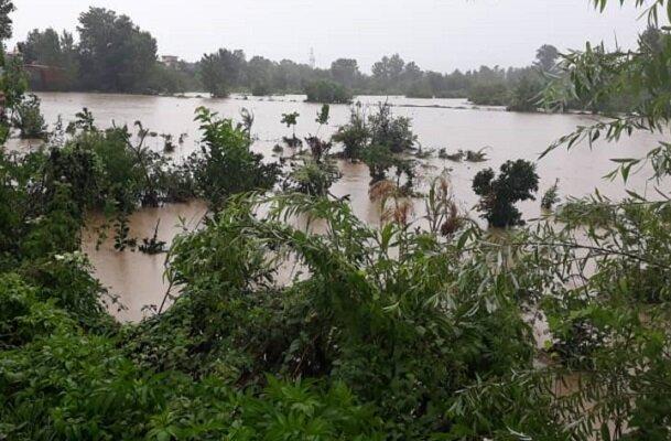 طغیان رودخانه های رودسر بر اثر بارش شدید باران