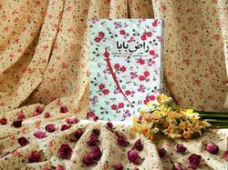 کتاب «راض بابا» نویسنده شیرازی تجدید چاپ شد