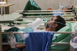 بیماری خطرناک «سپسیس»را بشناسیم/ بیماران کووید ۱۹ مراقب باشند