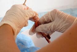 ذخیره ۱۲۰۰ نمونه خون بند ناف نوزاد در قزوین