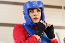 Maryam Hashemi