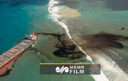 VIDEO: Mauritius oil spill in Indian Ocean