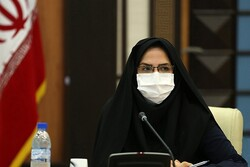 ۹۰۰ نفر در استان بوشهر عضو صندوق اعتباری هنرمندان شدند