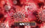 تصاویر میکروسکوپی از ویروس کرونا روی ماسکها