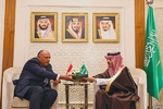 وزرای خارجه مصر و عربستان دیدار کردند