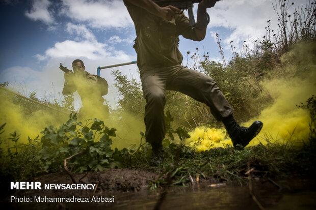 İran'da komondolar böyle yetiştiriliyor