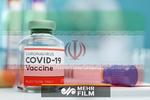 واکسن ایرانی کرونا وارد مرحله انسانی شد