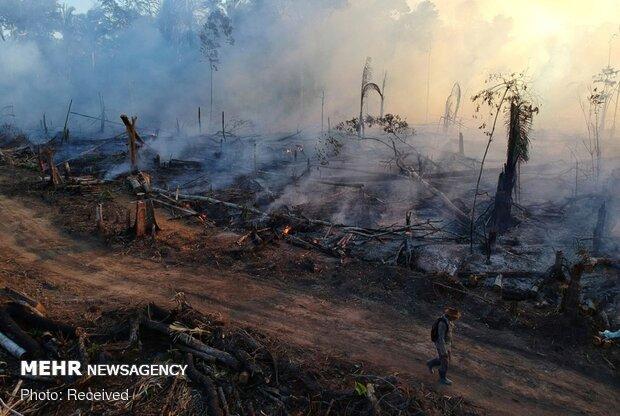 آتش سوزی در جنگلهای آمازون