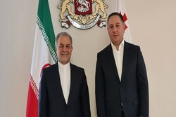 Iran, Georgia stress expansion of bilateral ties