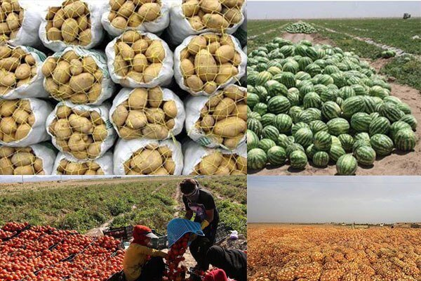 Iran's export of agri. products at 16% growth in 4 months