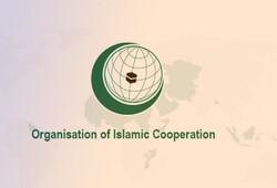 Parl. speaker appoints Iran's representative in PUIC