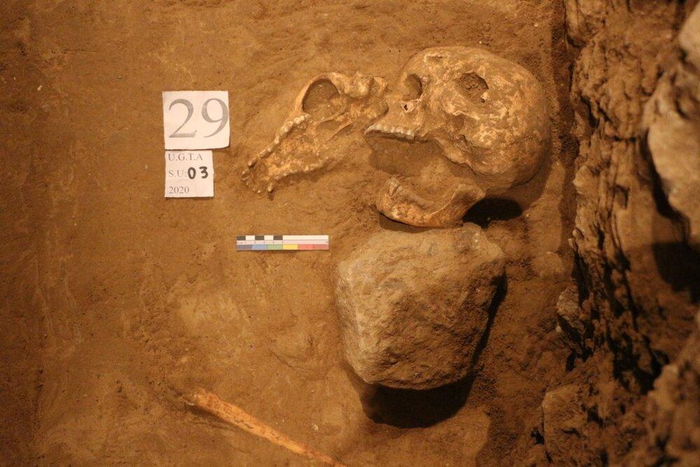 پیدا شدن آلبوم ناصری/ کشف اسکلت در تخت جمشید