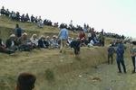 برخورد قانونی با برگزارکنندگان مسابقه اسبدوانی در «جرگلان»
