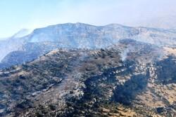 آتش در کوههای نیر شهرستان بویراحمد کنترل شد/حضور ۴۰۰نیرو در منطقه