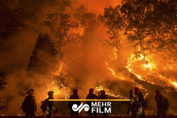 VIDEO: California wildfire forces people to evacuate homes