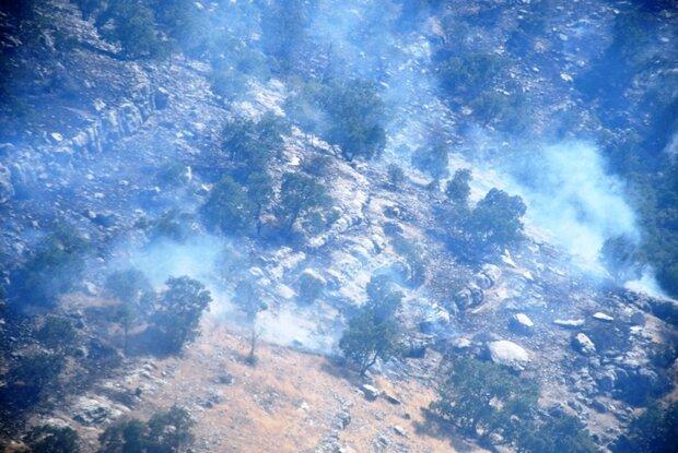 آتش سوزی جنگل ها در سه نقطه از کهگیلویه و بویراحمد ادامه دارد