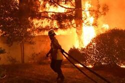 کیلی فورنیا کے جنگلات میں 300 مقامات پر لگی آگ بے قابو ہوگئی