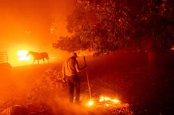 کالیفرنیا در محاصره آتش