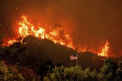 Californiya'daki orman yangınları durmuyor