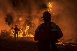 تداوم آتشسوزی در کالیفرنیا/ ترامپ وضعیت فوقالعاده اعلام کرد