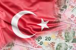 رئیس بانک مرکزی ترکیه بدلیل سقوط لیر برکنار شد
