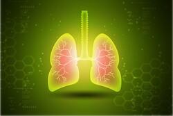 ارتباط عنصر کادمیوم با بروز عفونت شدید آنفلوانزا و ذات الریه