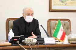 New chapter in Iran-IAEA cooperation: Salehi